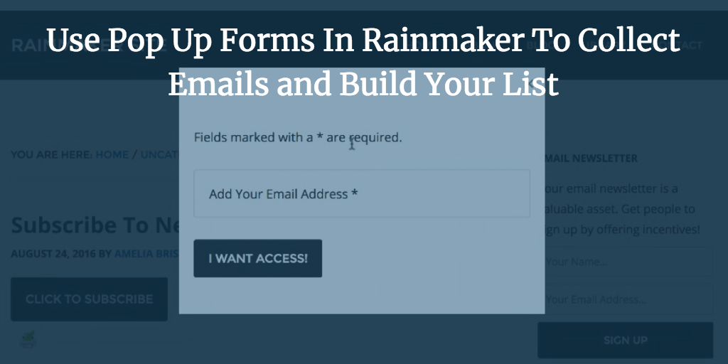 Add A Modal Pop Up Opt In Form To Rainmaker